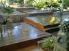 residential garden - entrance - 3 of 3